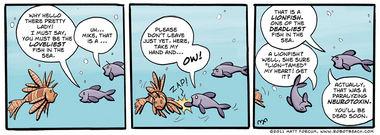 136 – The Loveliest Fish